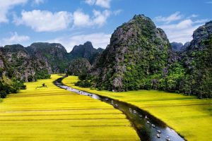 Cuc-Phuong-National-Park-Ninh-Binh-Vietnam-001.jpg