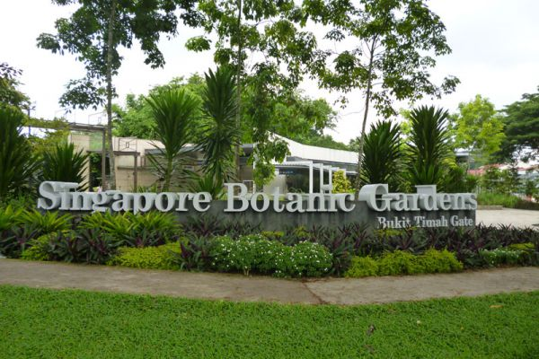 Botanic Gardens : Singapore