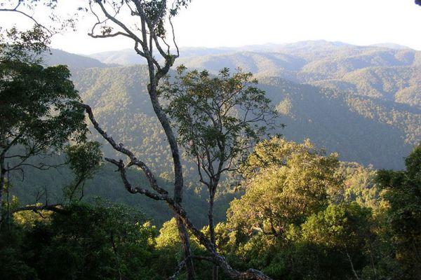 Doi Phu Nang National Park