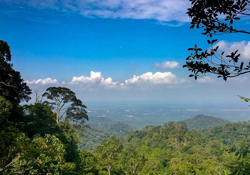 Gunung Pulai