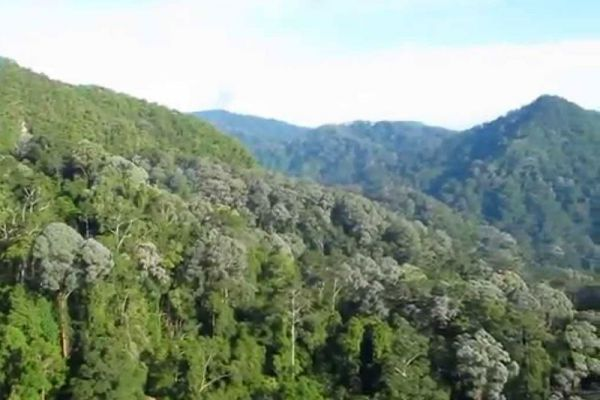 Hala-Bala Wildlife Reserve