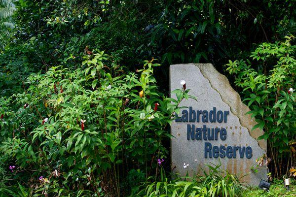 Labrador Nature Reserve