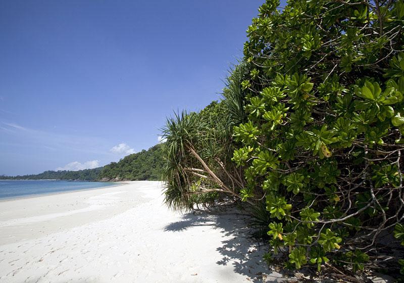 Lampi Island
