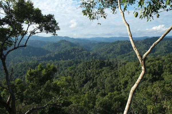 Nature Reserve Bokeo