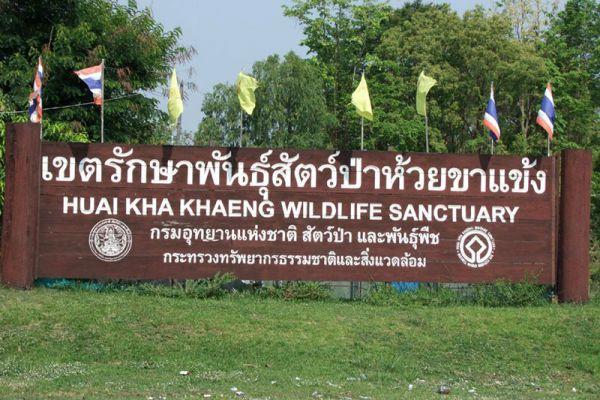 Thung Yai Naresuan - Huai Kha Khaeng Wildlife Sanctuary