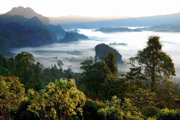 Phu Langka Forest Park
