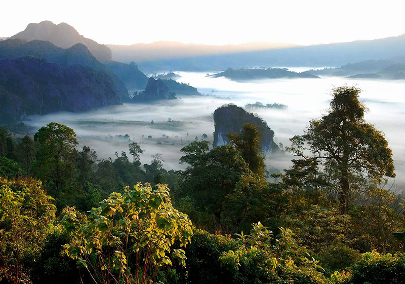 Phu Langka Forest Park : Phayao Tourist Destination Reviews @ Thailand