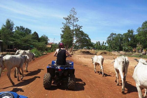 Cambodia Quad Bike