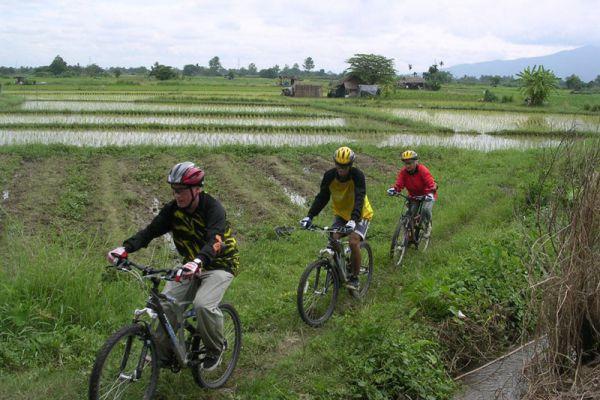 Mountain Biking Chiang Mai