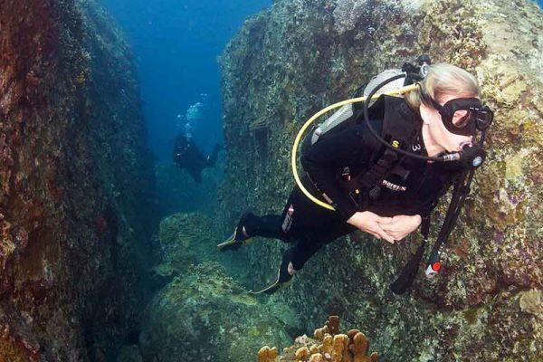 Rainbow Divers