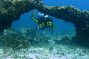Sea Dragon Dive Center