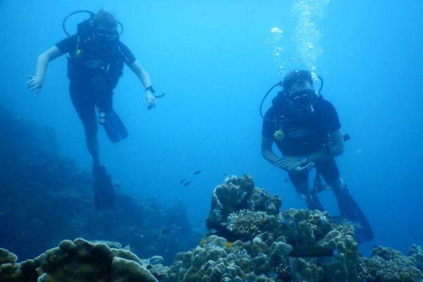 Silent Divers Samui
