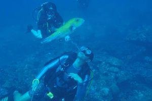 Wetzone Divers Khaolak