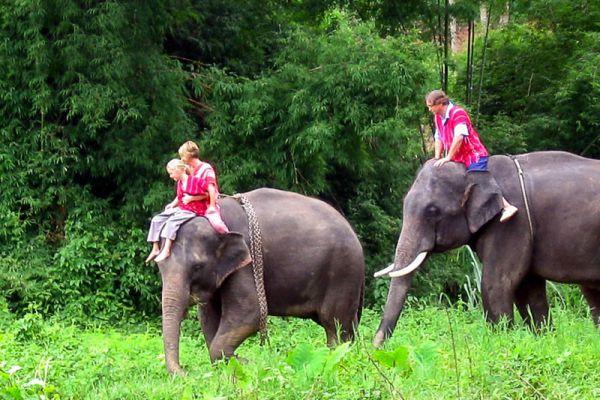 Wild Thailand Adventure Holidays