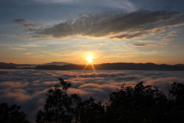 Ai Yoeweng Sea Mist