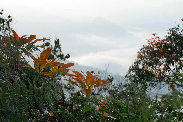 Khao Liam Sea Mist