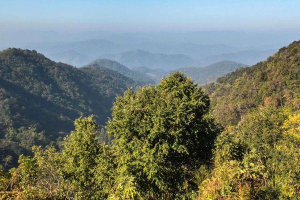 Samoeng Viewpoint