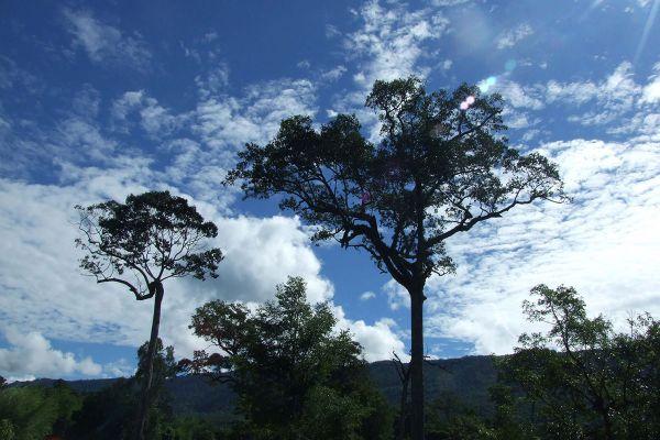 Sup Langka Wildlife Sanctuary