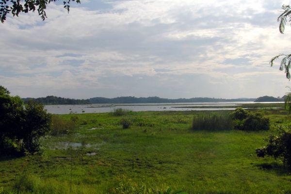 Chiang Saen Lake