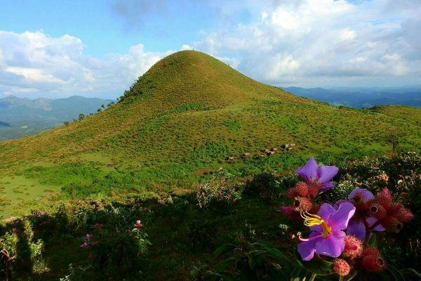 Doi Pui Luang
