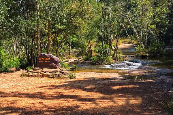 Phu Chong Na Yoi National Park