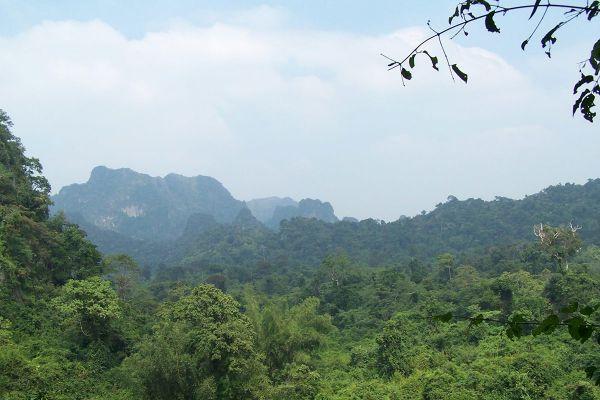 Phu Pha Lom Forest Park