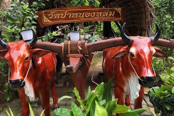 Wat Pa Nong Lom