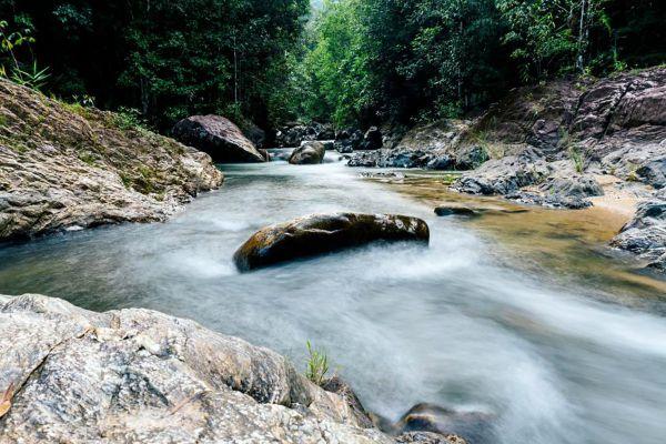 Ton Pariwat Wildlife Sanctuary