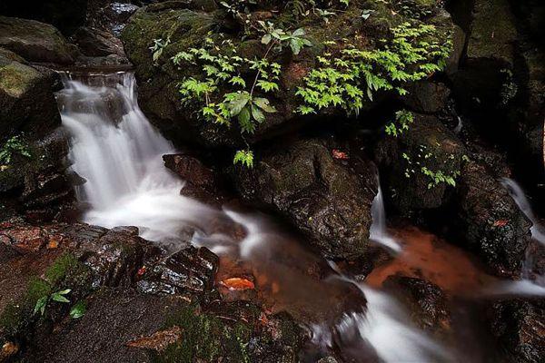 Tonsai Waterfall