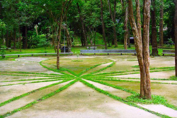 Huay Kaew Arboretum