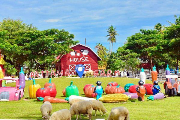 Pattaya Sheep Farm