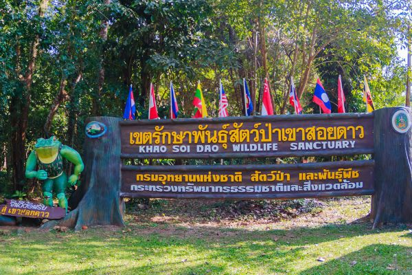 Khao Soi Dao Wildlife Sanctuary