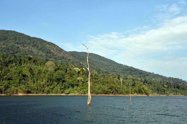 Pluang Dam