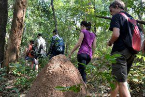 Active-Thailand-Tour-Chiang-Mai-001.jpg