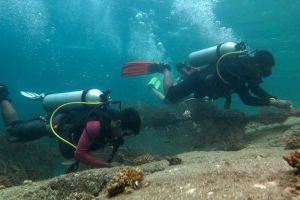 Adang-Sea-Divers-Koh-Lipe-Satun-Thailand-002.jpg