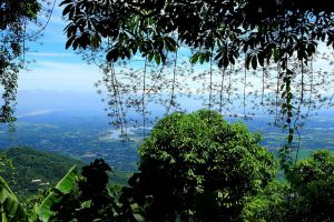 Ba-Vi-National-Park-Hanoi-Vietnam-004.jpg