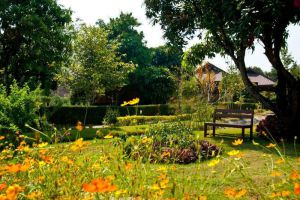 Baan-Krating-Pai-Resort-Mae-Hong-Son-Thailand-Garden.jpg