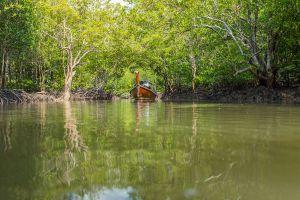 Baan-Thung-Yee-Pheng-Mangrove-Forest-Lanta-Krabi-Thailand-01.jpg
