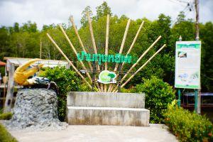 Baan-Thung-Yee-Pheng-Mangrove-Forest-Lanta-Krabi-Thailand-04.jpg