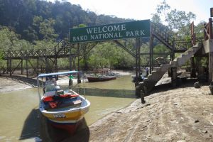 Bako-National-Park-Kuching-Sarawak-Malaysia-002.jpg
