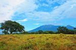 Baluran-National-Park-East-Java-Indonesia-001.jpg