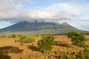 Baluran-National-Park-East-Java-Indonesia-004.jpg
