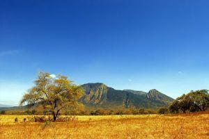 Baluran-National-Park-East-Java-Indonesia-005.jpg