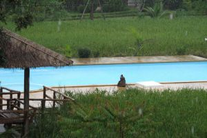 Ban-Chomna-Resort-Chiang-Rai-Thailand-Pool.jpg