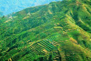 Banaue-Rice-Terraces-Ifugao-Philippines-001.jpg