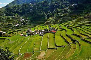 Banaue-Rice-Terraces-Ifugao-Philippines-002.jpg