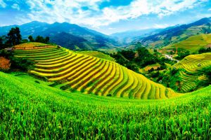 Banaue-Rice-Terraces-Ifugao-Philippines-004.jpg
