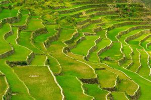 Banaue-Rice-Terraces-Ifugao-Philippines-005.jpg