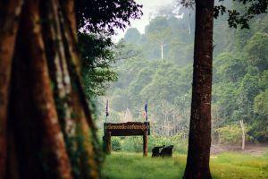Bang-Lang-National-Park-Yala-Thailand-04.jpg