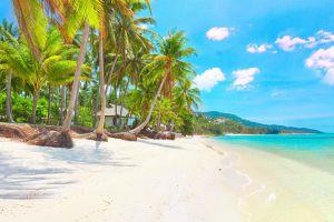 Bang-Por-Beach-Samui-Suratthani-Thailand-02.jpg